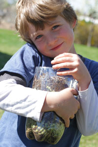 soda bottle compost science project